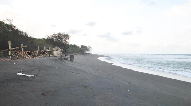 2 - Pemulihan Ekosistem untuk Minimalisasi Bencana Pesisir