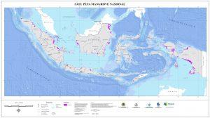MANGROVE_INDONESIA