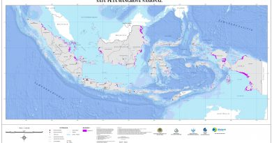 Mangrove: The Next Truf Card Indonesia