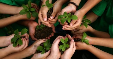 Hari Bumi Internasional - Ayo Kita Menanam Pohon