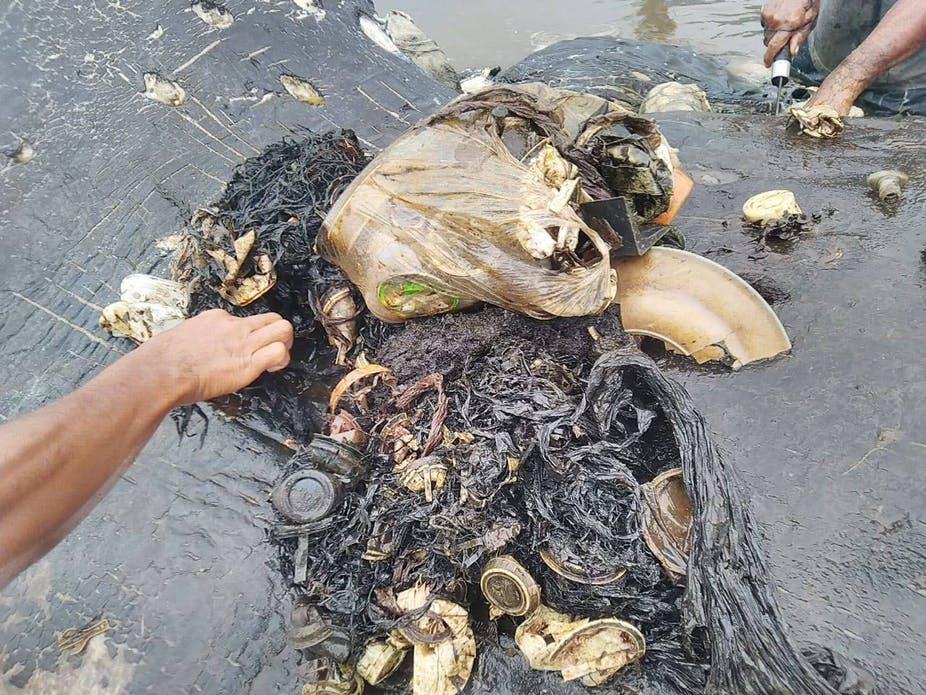 Sampah Plastik sangat mencemari lingkungan