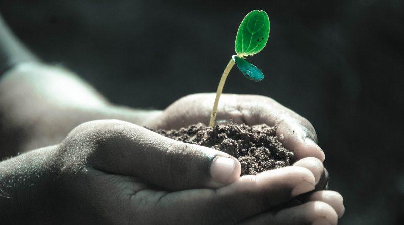 Pencegahan Erosi Tanah