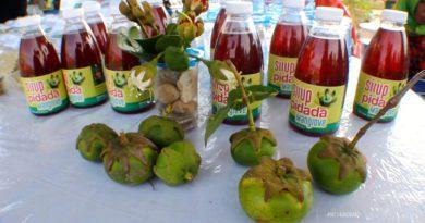 Sirup Pidada Salah Satu Olahan dari Hutan Mangrove